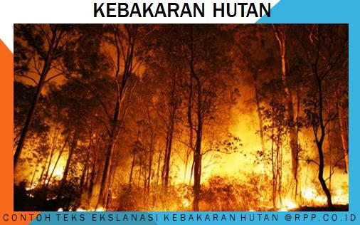 Contoh teks eksplanasi tentang kebakaran hutan
