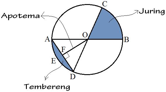 Unsur Unsur Lingkaran dan Penjelasannya